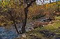 0164 - Nordkorea 2015 - Sinhuangsan - Fluss aus Stein (22939853206).jpg