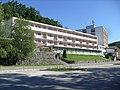 08.08.2010. Krapinske Toplice - panoramio (12).jpg