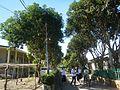 09471jfAlexis G. Santos National High School Liciada, Bustos Bulacanfvf 14.jpg