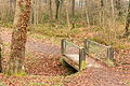 15-11-25-Mureck-Steiermark-RalfR-WMA 4025.jpg