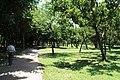 2010 07 21030 6731 Da'an District, Taipei, Daan Park, Taiwan.JPG
