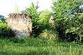 2012-06 Trzebina 17.jpg