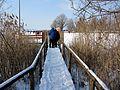 2012 'Seegfrörni' - Pfäffikersee - Strandbad Auslikon 2012-02-12 15-06-02 (SX230).JPG