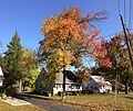 2014-10-30 10 39 23 Sweet Gum during autumn on Durham Avenue in Ewing, New Jersey.JPG