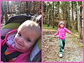 2014 to 2017 Charlie First Day Hike Virginia State Parks (31303977904).jpg