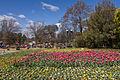 2015-09-18 Floriade Canberra 2015 - 4.jpg
