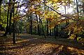 20151101 1217 Krakow Park Bednarskiego.jpg