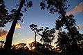 237, Taiwan, 新北市三峽區有木里 - panoramio (3).jpg