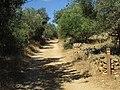 27-06-2017 Way-marker post Footpath GR13, Alcaria, Albufeira (5).JPG