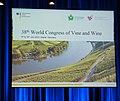38th World Congress of Vine and Wine in Mainz by Olaf Kosinsky-11.jpg