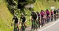 4 Etapa-Vuelta a Colombia 2018-Ciclista en el Peloton 7.jpg