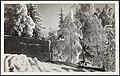 7. Vinter i Norge (16017946257).jpg
