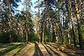 71-101-5028 Cherkasy Sportyvny park SAM 8876.jpg