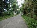 9501Poblacion Del Carmen, Alaminos, Road 26.jpg