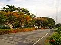 AIT - panoramio - Seksan Phonsuwan (53).jpg