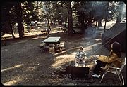 AZALEA CAMP GROUND AT DAWN - NARA - 542727.jpg