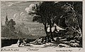 A donkey carrying wood through a snowy landscape. Etching by Wellcome V0007628ETL.jpg