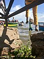 A man carries fish cargo from a boat that has landed at panyimur landing site in Nebbi district, Uganda.jpg