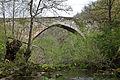 A ponte dende o río (7348635738).jpg