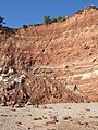 A recent cliff fall just east of Sidmouth - geograph.org.uk - 1540087.jpg