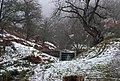 A small gauging weir - geograph.org.uk - 2255705.jpg