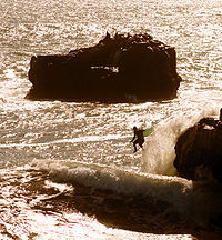 A surfer is jumping into incoming surf.jpg