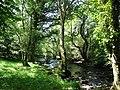 Afon Gwyrfai below the Gwredog-Isaf bridge - geograph.org.uk - 830730.jpg
