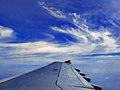 Airbus Wing 01798 changed.jpg