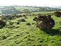Aish Ridge - geograph.org.uk - 169964.jpg