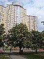 Akademmistechko (Kyiv, Ukraine) (34683032245).jpg