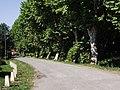 Allée de l'Aule à Sarriac-Bigorre.jpg