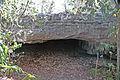 Altar Cave (San Salvador Island, Bahamas) 2 (16391101782).jpg