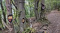 Altenahr Gesichterwald am Teufelsloch.jpg