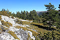 Alto de las Barracas vista (3).JPG