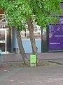 Alvocater de la plaça de Can Bruixa P1510809.jpg