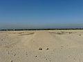 Amarna auteldesert2.jpg