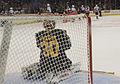 American Hockey League ERI 5578 (5523263183).jpg