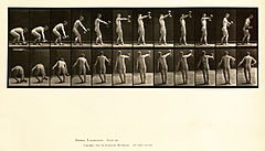 Animal locomotion. Plate 326 (Boston Public Library).jpg