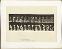 Animal locomotion. Plate 428 (Boston Public Library).jpg