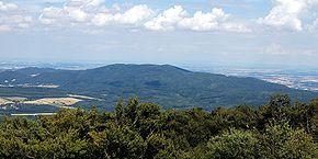 Geschichten Aus Dem Wiener Wald Wikipedia