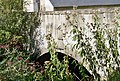 Ansembourg 1696 bridge upwards.jpg