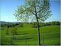 April Parc Natural Freiburg Germany - Master Landscape Rhine Valley Photography 2014 Landgut Mundenhof - panoramio.jpg