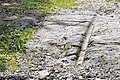Arnoldstein Maglern roemerzeitl Strassenzug eingemeißelte Spurrillen 28072012 143.jpg