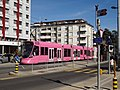 Art&tram-MonochromeRose-8.jpg