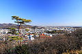 Ashikaga City View 1.JPG