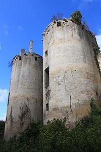 Asnières-en-Montagne - Chateau de Rochefort 42.JPG