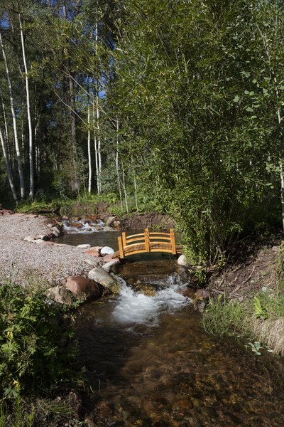 Attractive footbridge over a mountain stream along the winding road to the Maroon Bells, just outside Aspen, Colorado LCCN2015633717