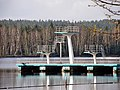 Aue + Schneeberg Filzteich 2011-04-16 ama fec (1).jpg