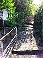 Aufstieg zur yburg.jpg
