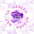 Azalea music.jpg